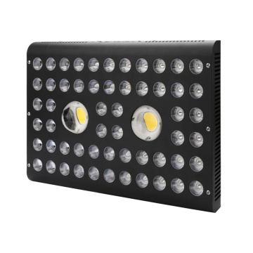 LED Grow Light Red Blue for Vegetables