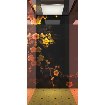 IFE VILLUX Villa Lift for Private Apartment