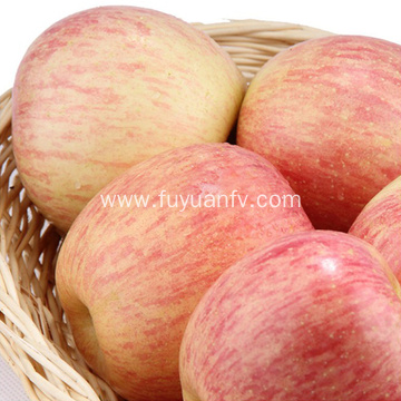 High Quality Good Tasty Shandong Fuji Apple