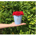 Mini luxury flower box round