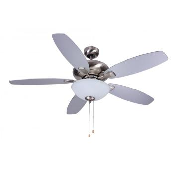 decoration Ceiling Fan with round glass lamp