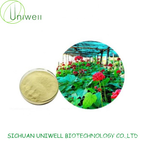 Ginseng Stem and leaves Extract 80% Ginsenosides Powder