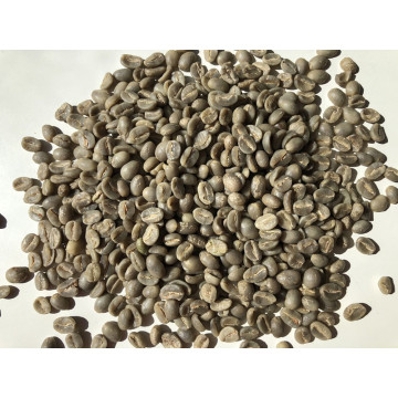 Arabica Roasted Coffee Beans with Special Flavor