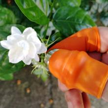 Thumb Cutter Separator Finger Tool Picking Equipment Easy To Cut In Labor-saving For Garden Harvesting Plants Gardening BV789