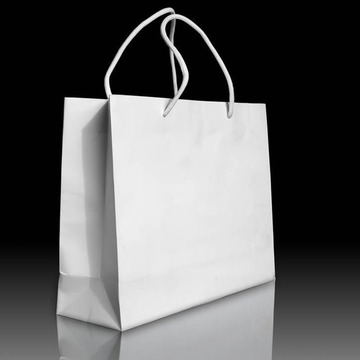 Clothing Recycled Wood-Free Paper Bag