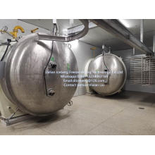 2XA50 Vacuum Freeze-drying Equipment.