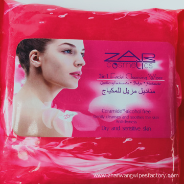 Disposable Large Size Personal Cleansing Adult Wet Wipes