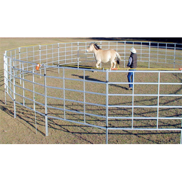 Galvanized  horse  fence panel