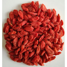 New certificate organic dried goji berry ningxia wolfberry