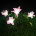 Outdoor Landscape Lily  Lights