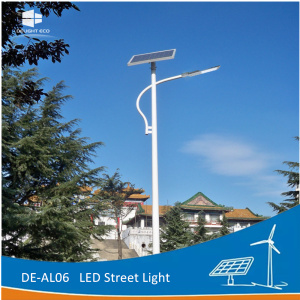 DELIGHT 8M 60W Single Arm Solar Landscape Lighting