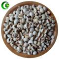 SEMEN COICIS ,coix Seed,barley Rice,Barley Seed,barley Kernels, NGS; Barley Jen; Yi Yi Ren , Lachrymae Jobi,YiMi Jobstears Seed