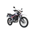 Motard Motor Vehicle 250cc