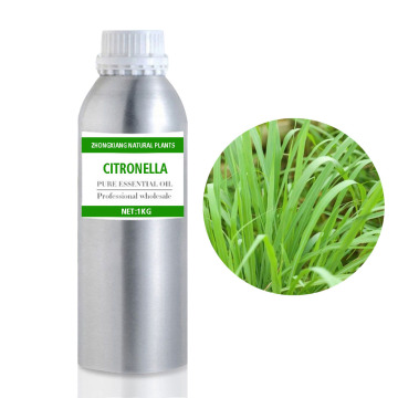 Wholesale citronella essential oil for mosquito repellent
