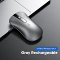 Gray 2.4GHz