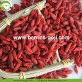 Wholesale Super Food Dried red Wolfberry