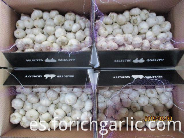 Where To Buy Pure Garlic Extract