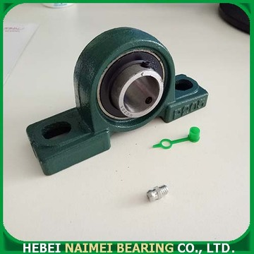 Radial Insert Bearing with Housing