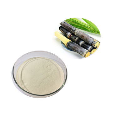 Best organic sugarcane juice powder