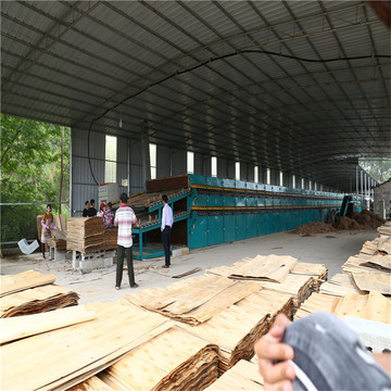 Environmental  Wood Veneer Dryer Machine