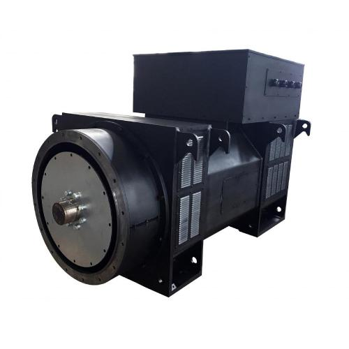 High Efficient 6 Pole Special Customized Generator