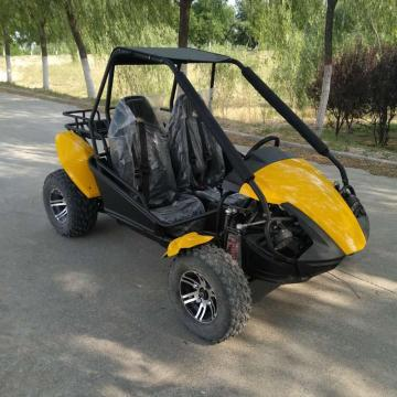 beach buggy adult 250 petrol go kart