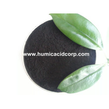 Super Sodium Humic Acid Powder From Leonardite