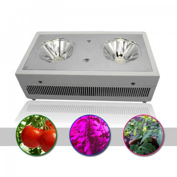 Indoor Hydroponic LED Grow Light