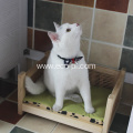 Eco Solid Wooden Waterproof Pet Bed