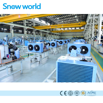 Snow World Flake Ice Machine Energy Save