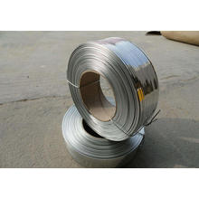 1mm*4mm AISI 304 flat steel wire