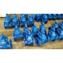 DN80 Gate Valve BS