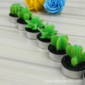12 Pieces Cactus tealight Candles