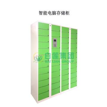 SMART Computer Storage Cabinet