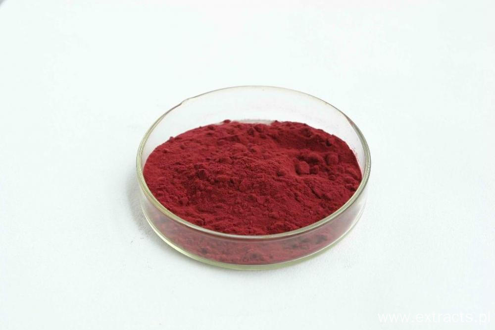 Bilberry Extract 25% Anthocyanin From Fruit