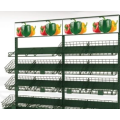 Multi-standard fruit and vegetable racks in the supermarket