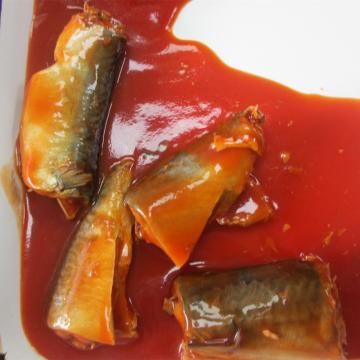 Mackerel Fish In Canned With Tomato Sauce