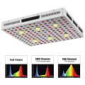 O le Phlizon COB LED Grow Light mo faʻamamaina o le tino