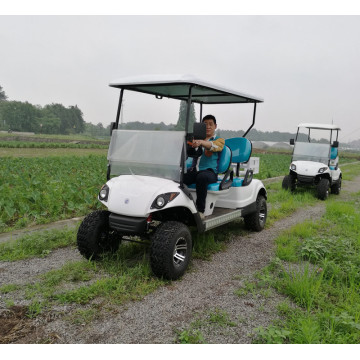 2015 yamaha gas golf carts for sale with yamaha type