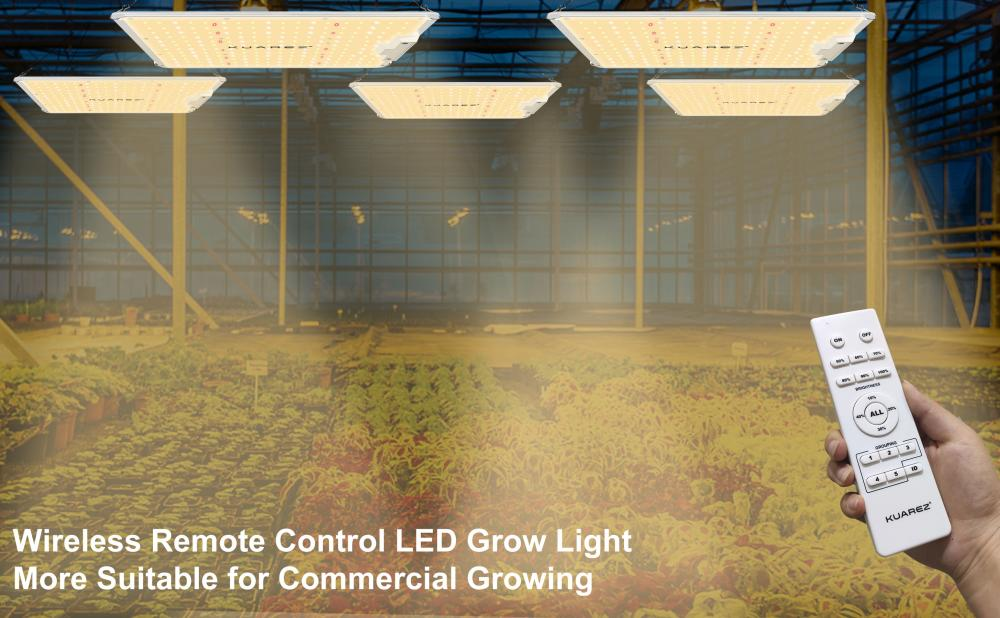 Smart LED Grow Lights with Wireless Control