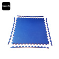 EVA 20mm Exercise Martial Arts Mat