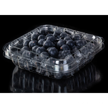 Blister clamshell printed PET blueberry blister packaging