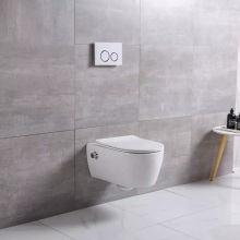 European Standard Wall Hung Rimless Toilet