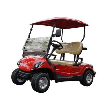 300CC 2 seats petrol golf cart