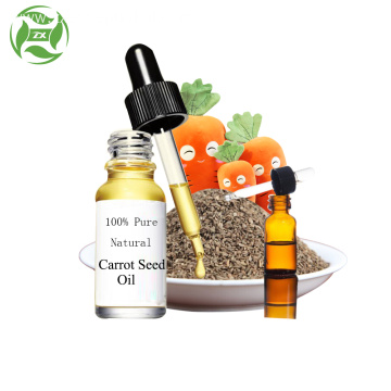 OEM natural organic 100% pure carrot seed oil