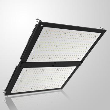 Placa cuántica DIY 200W lm301b Grow Light