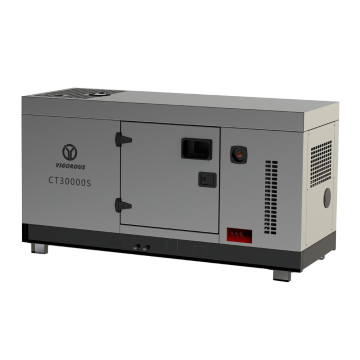 Diesel Powered Generator Set from VIGOROUS POWER