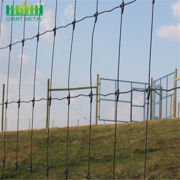 Popular Fixed-Knot Deer Fence Farm Fence in Africa