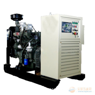 10kw to 100kw CE Approved Ricardo Natural Gas Generator