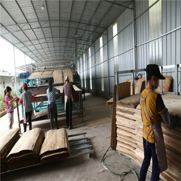 Roller Biomass Veneer Drying